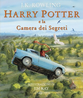Harry Potter e la Camera dei segreti - Ed. Illustrata Brossura